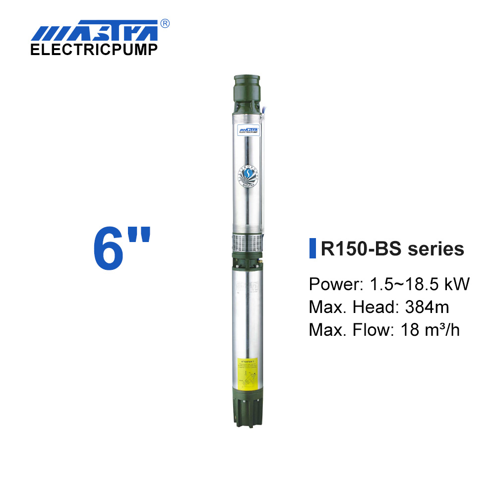 Mastra 6 inch Submersible Pump - R150-BS series